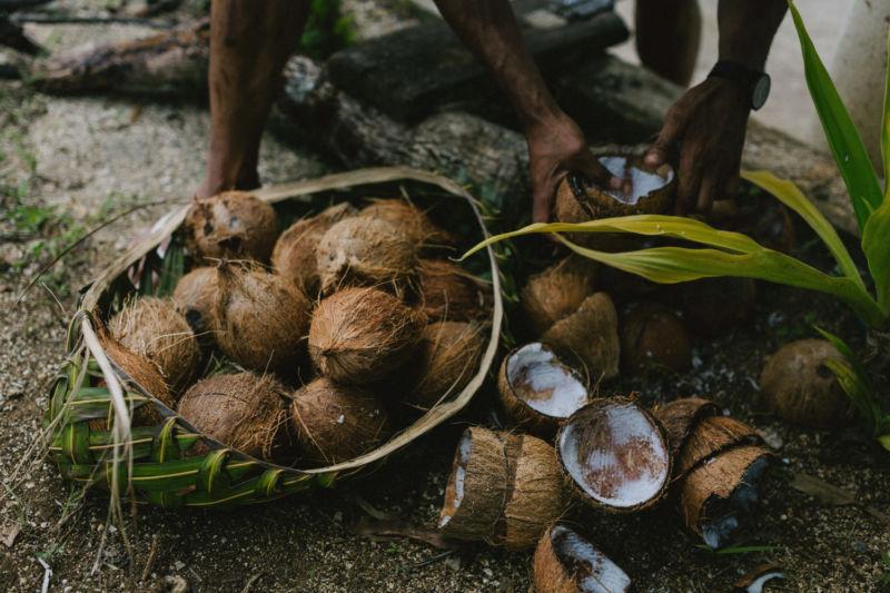 coconut milk making
