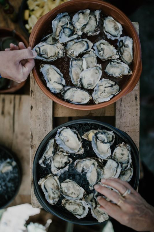 oysters on plates with hands from above